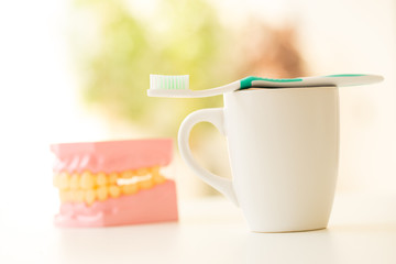 toothbrush set for dental care