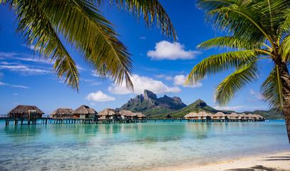 Bora Bora framed by palm trees