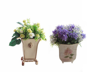 flowers in flower pots on white background