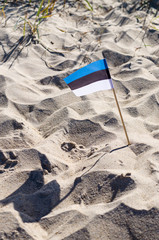 Small National flag of Estonia sticked in sand on beach