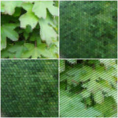 Green leaves texture. Collection of abstract multicolored