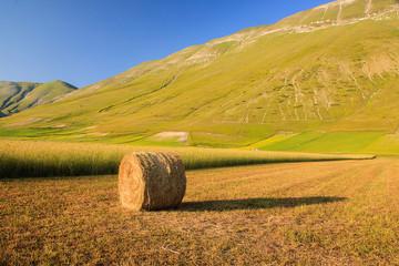 Castelluccio di Norcia: la natura incontaminata.