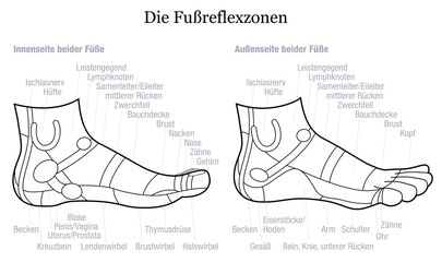 Foot reflexology chart - inside and outside view of the feet - with description of corresponding internal organs and body parts in GERMAN LANGUAGE. Outline vector illustration on white background.