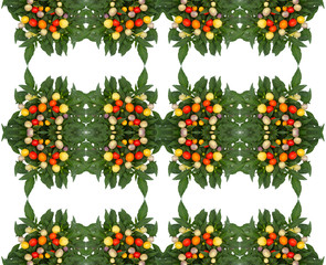 Ornamental Pepper seamless pattern background
