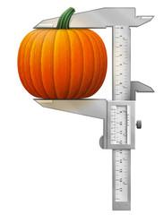 Vertical caliper measures pumpkin. Concept of squash and tool