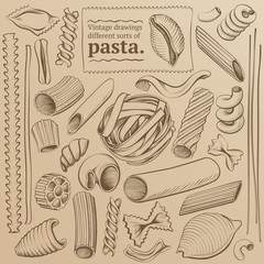 Freehand Vintage Contours Kinds of Pasta