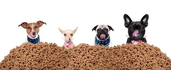 Hungrige Hunde hinter Hundefutter Haufen als Gruppe oder reihe  Wall mural