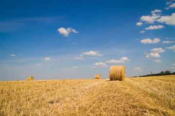 sheaf of hay on the field