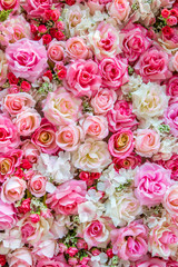 Soft Color roses for background , backdrops , patterns and etc.