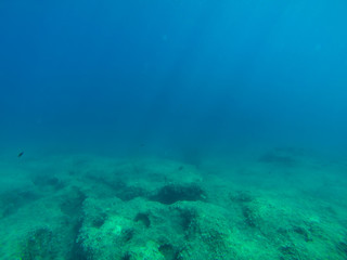 snorkerilng in the seas of Sicily