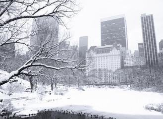 The view looking south across The Pond in Manhattan's Central Park between snow storms. Subtly blue toned black and white image.