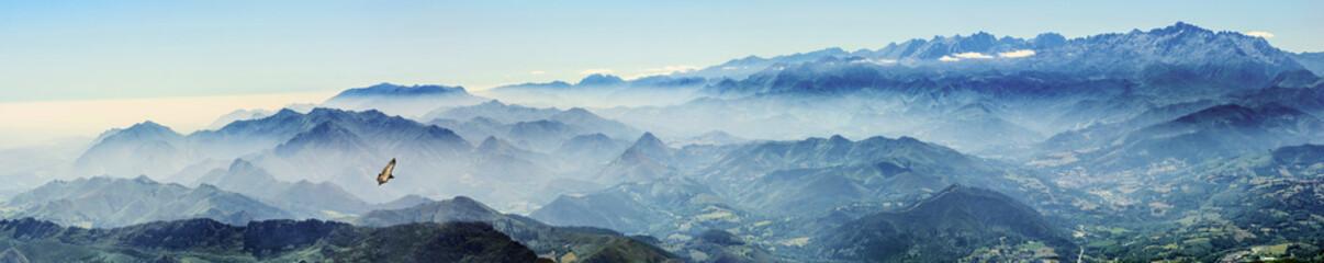 Foto op Plexiglas Blauwe jeans Hochgebirge mit Gänsegeier im Nebel (Picos de Europa, Asturien, Spanien)