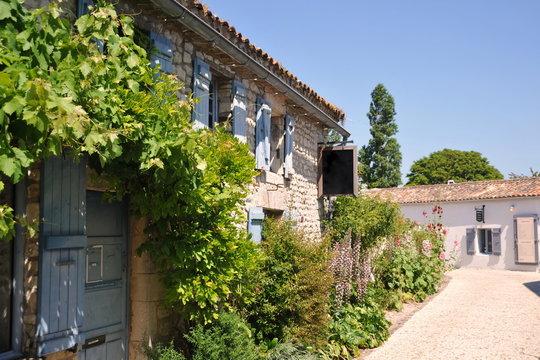 Les ruelles fleuries 3 de Talmont en Gironde