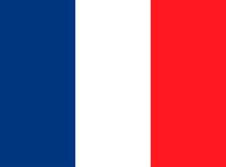 Illustration which depicts the flag of France