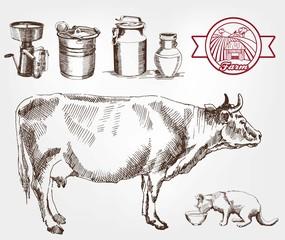 breeding cows