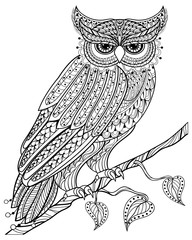 Hand drawn magic Owl sitting on branch for adult ant