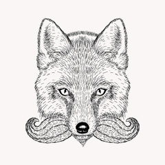 Sketch fox with a beard and moustache. Hand drawn vector  illust