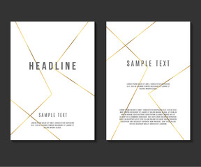 Luxury Minimalism Design Vector Template Layout For Magazine Brochure Flyer Booklet Cover Annual Report