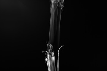 Smoking incense(Black and white scene)