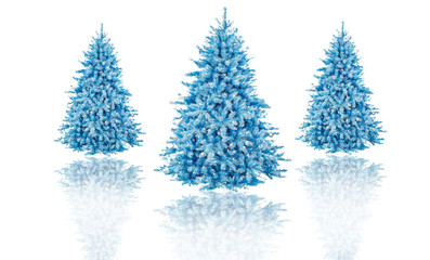 christmas tree in isolated background idea concept decoration