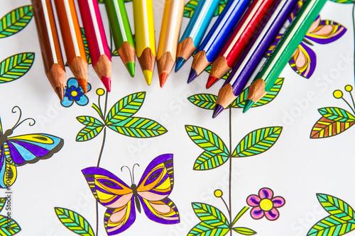 Lápices De Colores Sobre Dibujo Coloreado De Mariposas Y Plantas