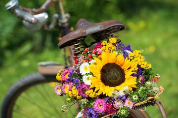 Altes Fahrrad mit Sommerblumen