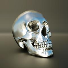 silver scull