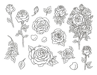 Set of ink hand drawn stylized flowers