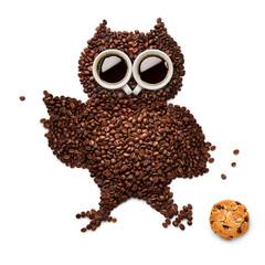 Fotobehang Bestsellers Owlet with cookie.