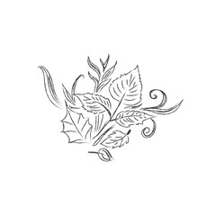 Sketch, autumn, leaves, design, vector illustration in sketch style