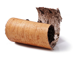 birch bark isolated on a white background.