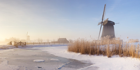 Wall Mural - Dutch windmills in a foggy winter landscape in the morning