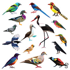 Birds-set colorful birds low poly design isolated on white background. Broadbill,Booby,Bronzewing,Raven,Pigeon,Tanager,Finch,Starling,Magpie,Barbet,Stork,Kingfisher,Bird of paradise,Duck.