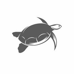 Sea turtle in the water vector illustration / Vector illustration, Turtle, Tortoise, Reptile, Tattoo, Underwater, Vintage, Aquatic