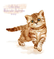 Little fluffy red kitten Spotted cat. Watercolor illustration of kitten.