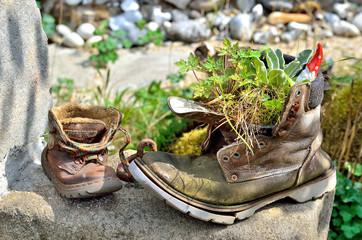 Zwei alte Wanderschuhe als Gartendokoration