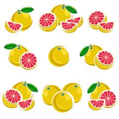 Grapefruit set. Vector