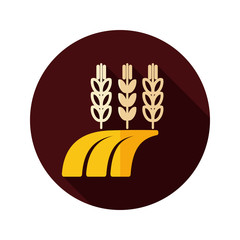 Ears of Wheat, Barley or Rye on Field flat icon