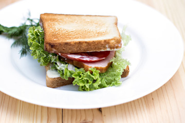 Sandwich  on the table
