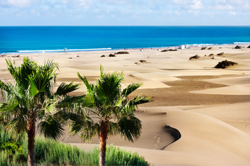Stores photo Iles Canaries Sand dunes of Maspalomas. Gran Canaria. Canary Islands.