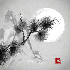 Pine tree branch, mountains and the Moon