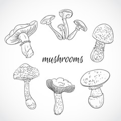 Set with a variety of vintage mushrooms. Collection of retro black and white hand drawn vector illustration. Card, print, postcard, poster.