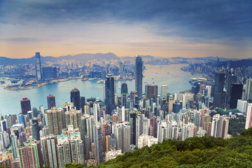 Garden Poster Hong-Kong Hong Kong. Image of Hong Kong skyline view from Victoria Peak.