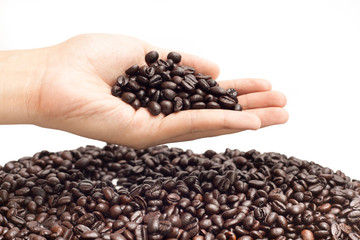 coffee bean on hand in isolated background idea  concept