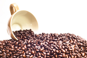 coffee bean in isolated background idea  concept