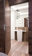 Entrance to contemporary bathroom