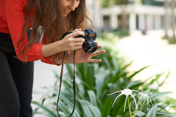 Photographing flower