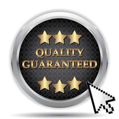 quality guaranteed icon