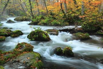 奥入瀬渓流の紅葉 阿修羅の流れ
