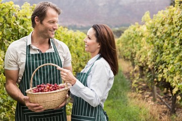 Smiling winegrower couple holding a basket of grapes